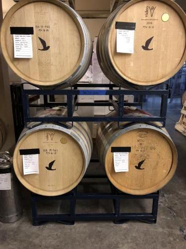2018 Pinot Noir just barreled down